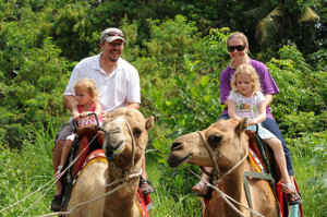 Bali Safari and Marine Park 11