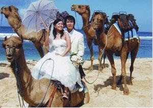 Camel Safari 4