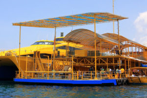 Deck Bounty Day Cruise