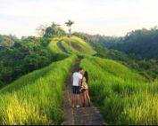bukit_campuhan_ubud1